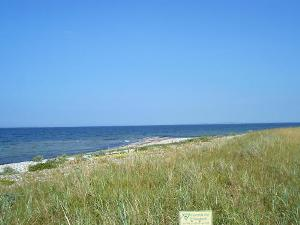 nature reserve at the Baltic Sea Shore